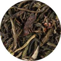 Hot Chocolat Tee