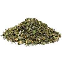 Grüner Tee Erfrischend-Würziger Hanf