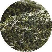 BIO Japan Gyokuro Himmelswiese Tee