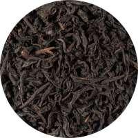 Ceylon OP KENILWORTH Tee