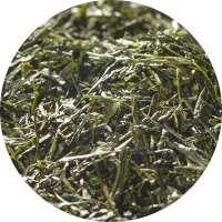 BIO Japan Gyokuro Asahi Tee