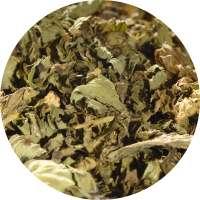 Pfefferminze Blattkrüll Tee
