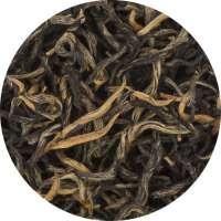 Nepal GOLD SHANGRI-LA Bio Tee